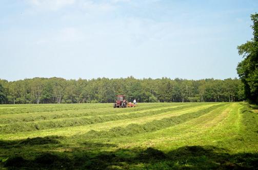 Foto Werkgroep Ruimtelijke Ordening & Milieu (en agrarisch recht)